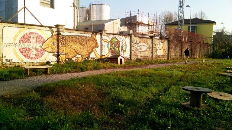 Graffiti Cascinet_Tulipando