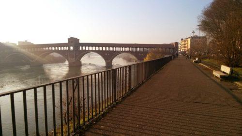 Ponte Coperto Pavia_Tulipando