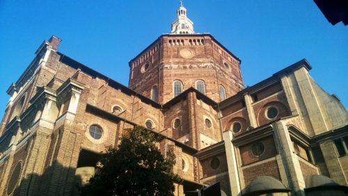Duomo di Pavia_Tulipando