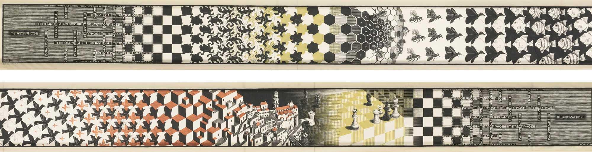 metamorfosi Escher_Tulipando