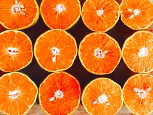 Arance Orange Fiber