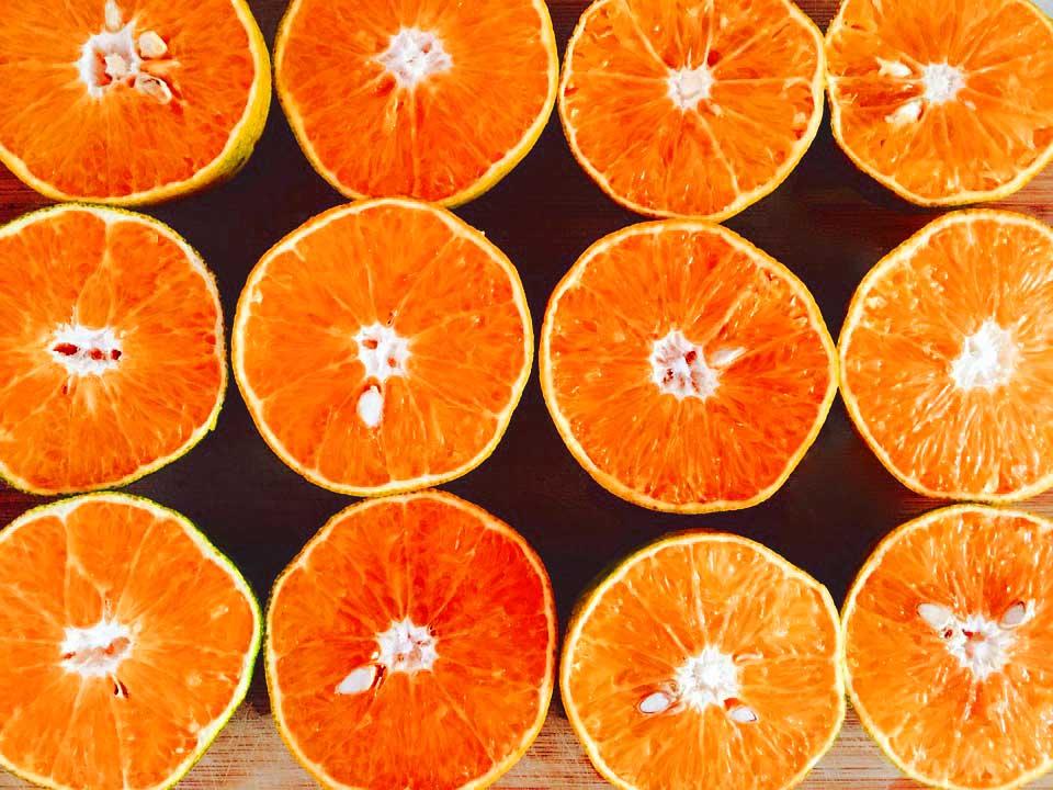 Risultati immagini per orange fiber