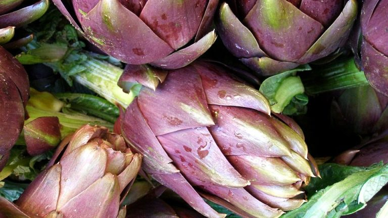 carciofo superfood_Tulipando