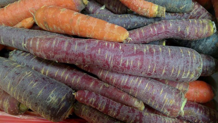Carote Superfood_Tulipando