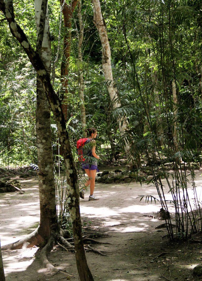 Tulipando nella giungla cenotes