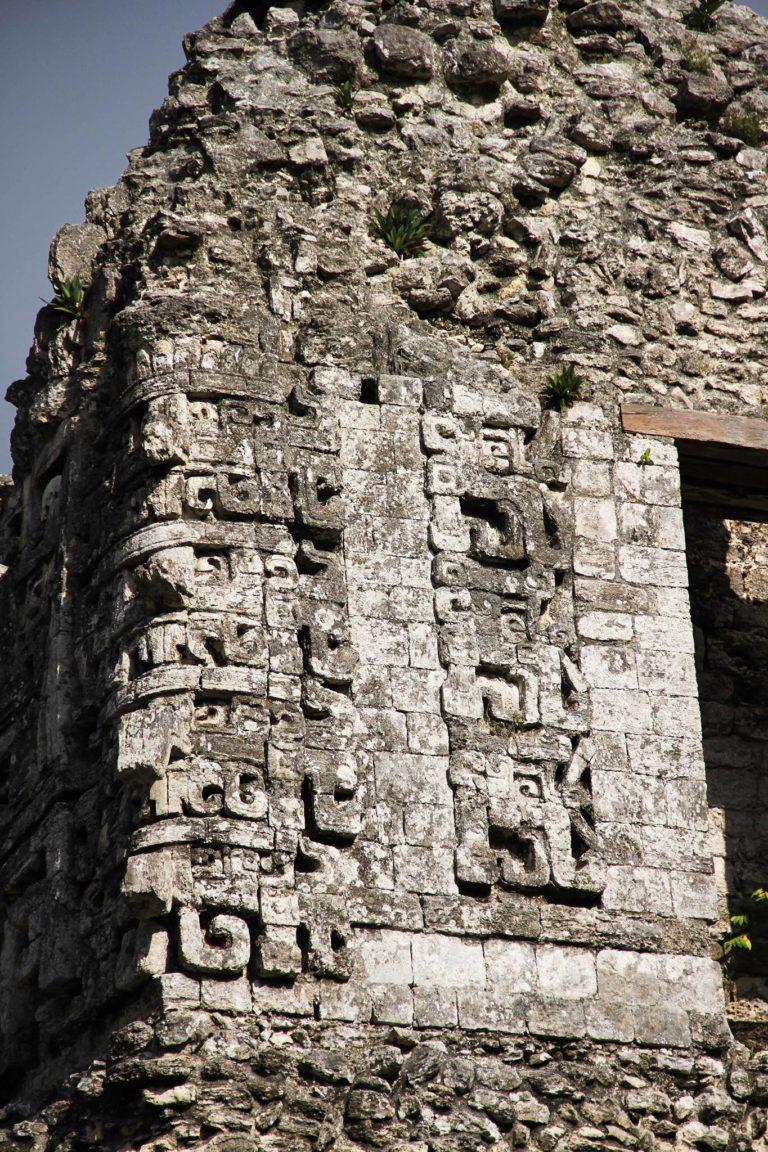Chicanna Messico Maya_Tulipando