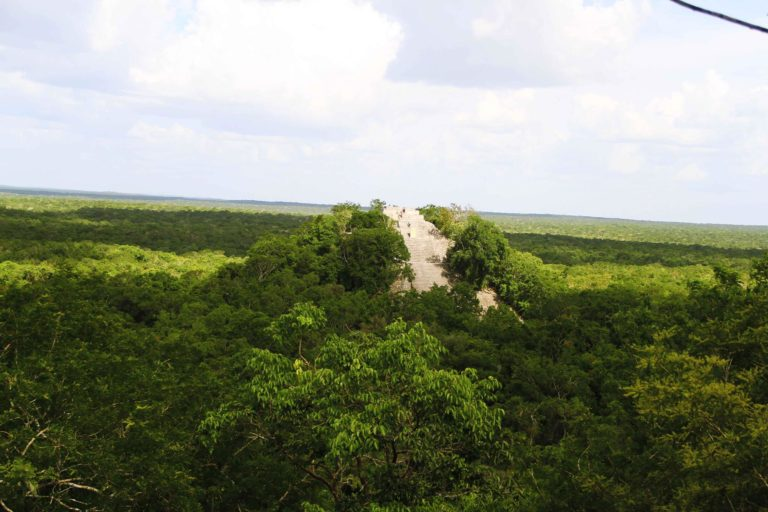 Calakmul 3 Messico Maya_Tulipando