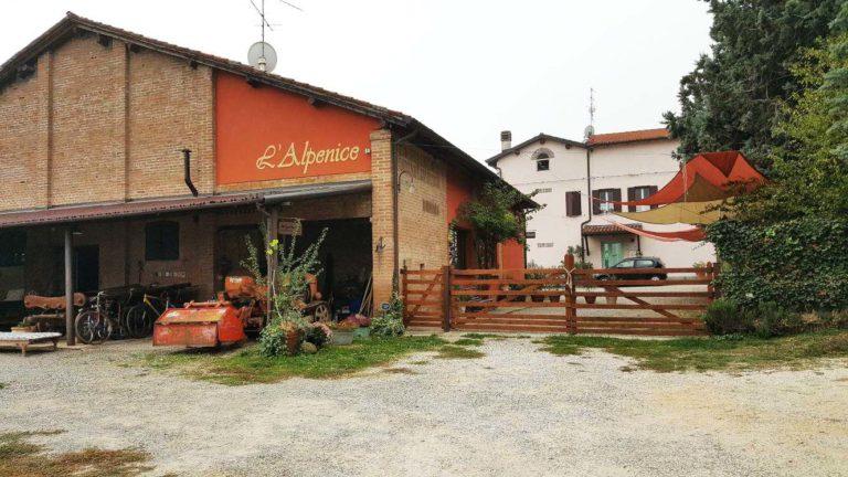 l'Alpenice colli bolognesi_Tulipando