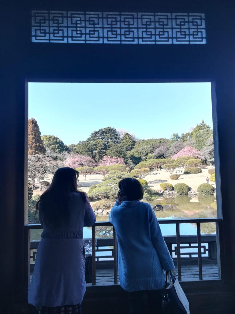 Shinjuku Gyoen viaggio in Giappone_Tulipando