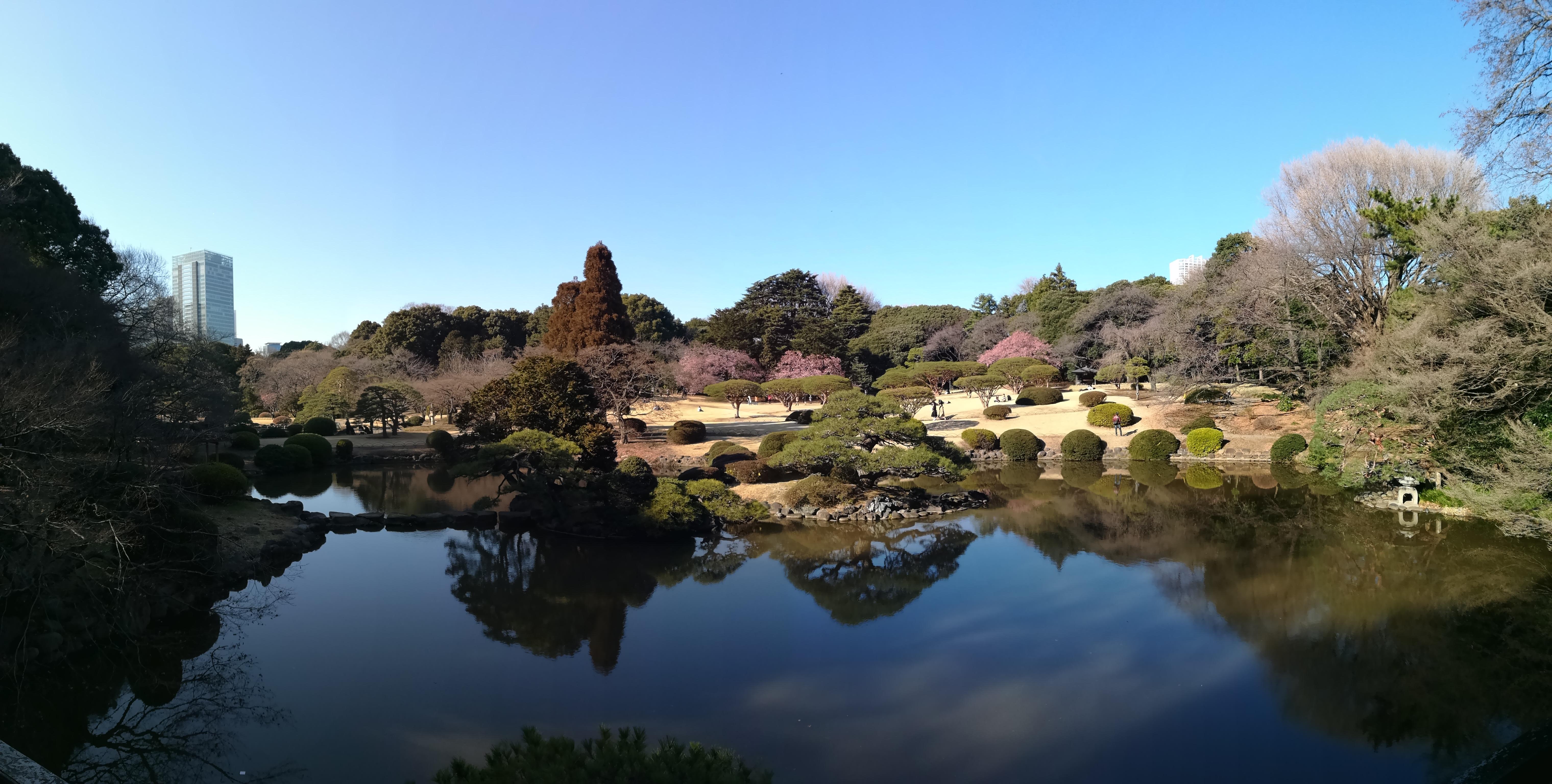 Giardino giapponese viaggio in Giappone_Tulipando