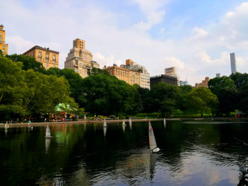 Central Park New York_Tulipando