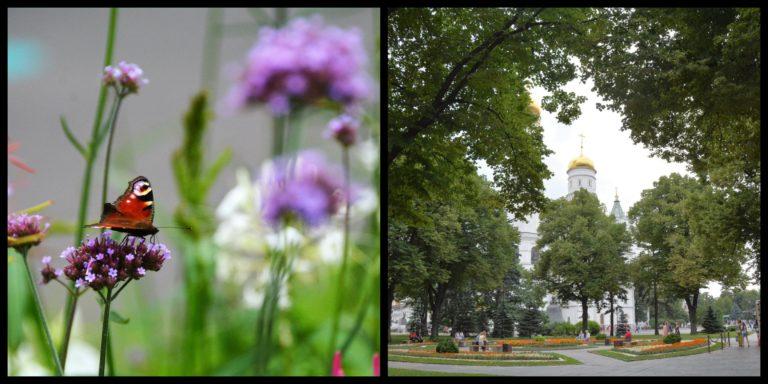 In Viaggio con Francesca a Mosca, verde_Tulipando